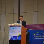 Partner Countries Delegates speaks at Vibrant Gujarat Global Summit 2013- Mahatma Mandir, Gandhinagar