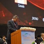 Shashi Ruia -ESSAR Group Chairman speaks at 6th Vibrant Gujarat Global Summit 2013- Mahatma Mandir, Gandhinagar