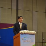 Geofrey Lee from Australia India Business Council @ 6th Vibrant Gujarat Global Summit 2013-Mahatma Mandir, Gandhinagar